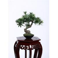 Buy cheap 28cm Bonsai Pine Tree 100% Botanically Accurate Structure Traditionally Bright Spot product