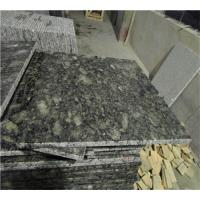 Buy cheap Butterfly Green Cleaning Granite Countertops Surface Polished Design from wholesalers