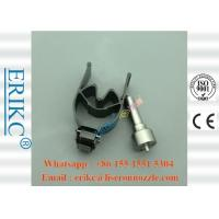 Wholesale ERIKC 7135-648 delphi injector repair kit  28239294 common rial valve 9308-621C nozzle L109pbd for EJBR01001A CITROEN from china suppliers