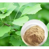 Buy cheap 90045-36-6 Ginkgo Biloba Extract  Natural Plant Extracts Antioxidant Activity from wholesalers