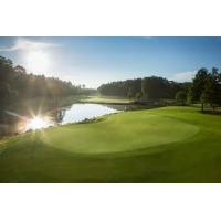 Buy cheap Popular Orlando Golf Packages Scenic Florida Woodlands With Multiple Courses from wholesalers