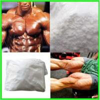 Wholesale USP Bodybuilding Steroid White Powder Testosterone Propionate CAS No. 57-85-2 from china suppliers