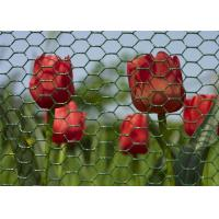 Buy cheap Environmental Plastic Coated Chicken Galvanized Wire Netting For Garden from wholesalers