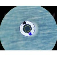 Buy cheap 1310nm 0.8mm Free Space Isolator , Double Stage High Isolation Free Space Optical Isolator from wholesalers