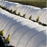 17g 3% UV pp spunbond non woven fabric for Agricultural weed-control fabric Manufactures