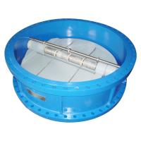 Buy cheap Dual Plate Industrial Check Valves ANSI 150LB JIS 10K PTFE Lined Disc from wholesalers