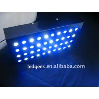 Buy cheap 300W led coral reef light aquarium light LPS&SPS light from wholesalers