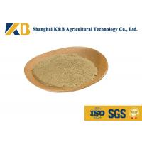 Buy cheap No Foreign Objects Organic Brown Rice Powder For Nutritional Supplements from wholesalers