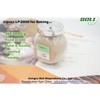 Buy cheap Lipase Solid Powder Baking Enzymes High Efficient Stable Activity 200000 U / g product