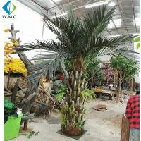 Wholesale Indoor Landscape Decorative Artificial Phoenix Palm Tree Customized Size Durable from china suppliers