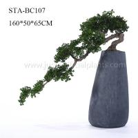 Wholesale Home Office Decoration Artificial Pine Bonsai Without Pot , Curving Stem from china suppliers