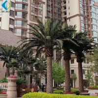 Wholesale Various Size Artificial Palm Trees For Hotel Pool Amusement Park Decoration from china suppliers