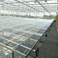 China Movable Wire Mesh Seedbed Plant/Flowers Nursery in Greenhouse on sale