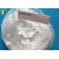 Wholesale Testosterone Sustanon 250 Injectable Anabolic Steroids Powder For Bodybuilding from china suppliers