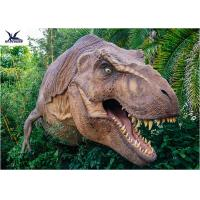 Wholesale Dinosaur Yard StatueWith Realistic Head Model , Dinosaur Garden Sculpture from china suppliers