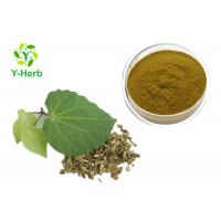Buy cheap Medicinal Kava Kavalactone Extract Powder Piper Methysticum Extract from wholesalers