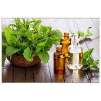 Buy cheap Corn Mint Oil for headaches,peppermint oil spider repellent,Peppermint leaf oil for digestive disorders from wholesalers