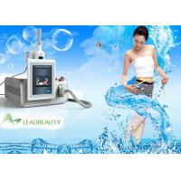 Wholesale Mini cryolipolysis technology weight loss vacuum beauty machine with one handles (Hot in USA) from china suppliers