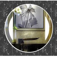 Buy cheap Silver mirror glass mirror hotel mirror from wholesalers