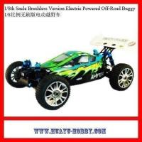 Buy cheap Best-selling RC Cars model Toys PLAMET 1/8th 4X4 RTR Brushless Version Electric Powered Off-Road Bug from wholesalers
