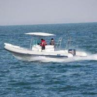 Buy cheap Rigid Inflatable Boat with PVC/Hypalon Material, 200 to 300hp Power and 12-person Capacity from wholesalers