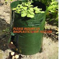 Buy cheap UV resistant PE potato growing bag garden planter bags with Flap and handles,Flap and Handles Collapsible 10 gallons from wholesalers