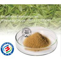 Buy cheap Nture Oganic Geen Tea Extract / Instant Green Tea Powder Tea Polyphenols for Anti Cancer from wholesalers
