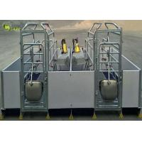 Buy cheap PVC Fence Stall Elevated Sow Farrowing Crate Galvanized Pig Limit Nursery Pen from wholesalers