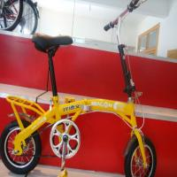 Wholesale famous fashional folding bicycle model FT-FB-09 from china suppliers