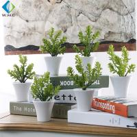 Wholesale Money Grass Plastic Green Plants 20cm Height Customized Design from china suppliers