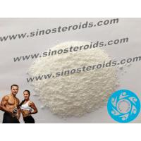 Wholesale 7-Keto-dehydroepiandrosterone 566-19-8 Safe Steroid Natural Muscle Growth White Powders from china suppliers