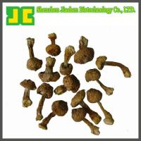 Buy cheap Agaricus blazei Murill Extract 5:1~20:1 from wholesalers