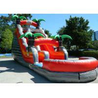 Buy cheap Colorful Backyard Tropical Inflatable Water Slide With 5 Years Warranty from wholesalers