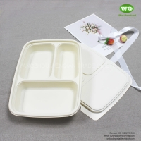 Buy cheap 850ml 3-Coms Biodegradable Corn Starch Lunch Box ,Factory Price Food Container for street food and food to go Caterers from wholesalers