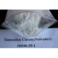 Wholesale Safety Sustanon 250 Injectable Anabolic Steroids for Bodybuilding , GMP from china suppliers