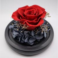 Buy cheap Romantic Real Eternal Roses , Glass Eternal Rose Gift Weddings Decoration from wholesalers
