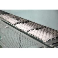 Buy cheap Waste Paper Pulp Molding Egg Tray Machine 50000pcs Per Working Day from wholesalers