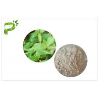 Buy cheap CAS 989 51 5 Egcg Green Tea Leaf Extract , Green Tea Supplements For Weight Loss from wholesalers