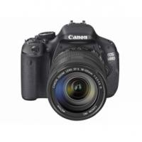 Buy cheap Wholesale Price Canon EOS 40D 10.1MP Digital SLR Camera from wholesalers