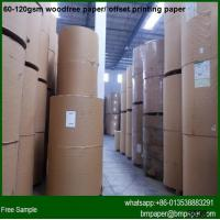 Wood Pulp Booked Bible Printing Paper Reels Manufactures