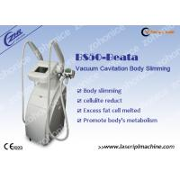 Vacuum Cryolipolysis Body Slimming Machine For Loss Weight Manufactures