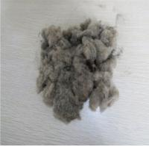 Wholesale Nylon separationRubber Powder Pulverizer Machine /Fiber separator  300-500KG/H from china suppliers