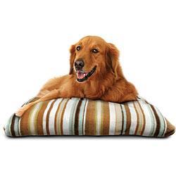 Disposable pet pad Manufactures