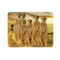 Buy cheap Custom Animal 3D Fridge Magnets PET Lenticular Thickness 0.6mm from wholesalers