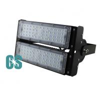 Philip LED 100W  IP65 Led Outdoor Flood Light Bulbs CE&Rohs Certificated Manufactures