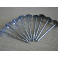 "11 Gauge 1.25"" Galvanized Steel Roofing Nails Grip Rite with Smooth Shank Manufactures"