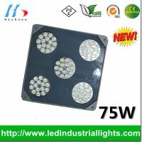 China Energy Saving Gas Station Canopy Lights Meanwell Driver 75w on sale