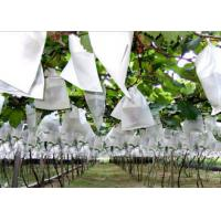 Durable Non Woven Garden Weed Control Fabric for Plant Protection / Agriculture Covering Manufactures