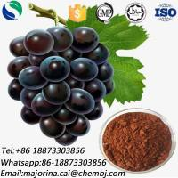 Buy cheap Grape Seed Extract for Food Additive Skin Whitening CAS 84929-27-1 from wholesalers