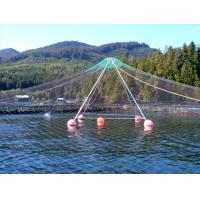 Buy cheap HDPE PE Material Anti Bird Net / Bird Control Netting Customized Length from wholesalers